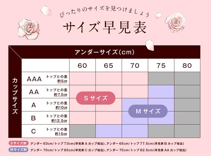 ナイトブラのサイズ表の例